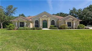 Main image for 11807 RIDGE VIEW CIRCLE, CLERMONT,FL34711. Photo 1 of 25