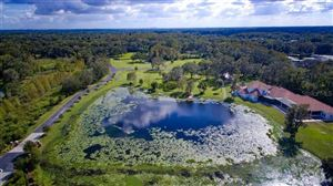 Main image for 309 GRANDE GROVE COURT, LUTZ, FL  33549. Photo 1 of 8