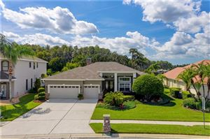Photo of 19906 WYNDHAM LAKES DRIVE, ODESSA, FL 33556 (MLS # T3205115)