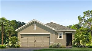 Photo of 10214 GEESE TRAIL CIRCLE, SUN CITY CENTER, FL 33573 (MLS # T3169124)