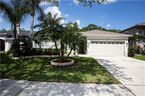 Main image for 13017 ROYAL GEORGE AVENUE, ODESSA,FL33556. Photo 1 of 29