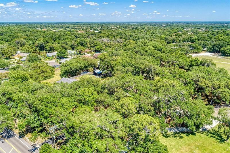 Photo of 10837 OLD TAMPA ROAD, PARRISH, FL 34219 (MLS # A4499126)