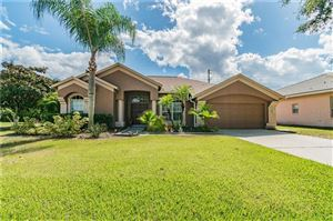 Photo of 3546 BURNTWOOD COURT, HOLIDAY, FL 34691 (MLS # U8062136)