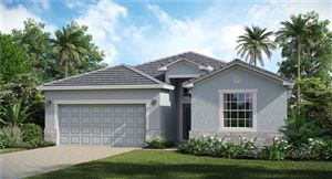 Photo of 17327 BLUE RIDGE PLACE, BRADENTON, FL 34211 (MLS # T3197139)