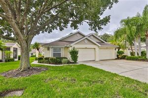 Photo of 2408 NANTUCKET FIELD WAY, SUN CITY CENTER, FL 33573 (MLS # T3193141)