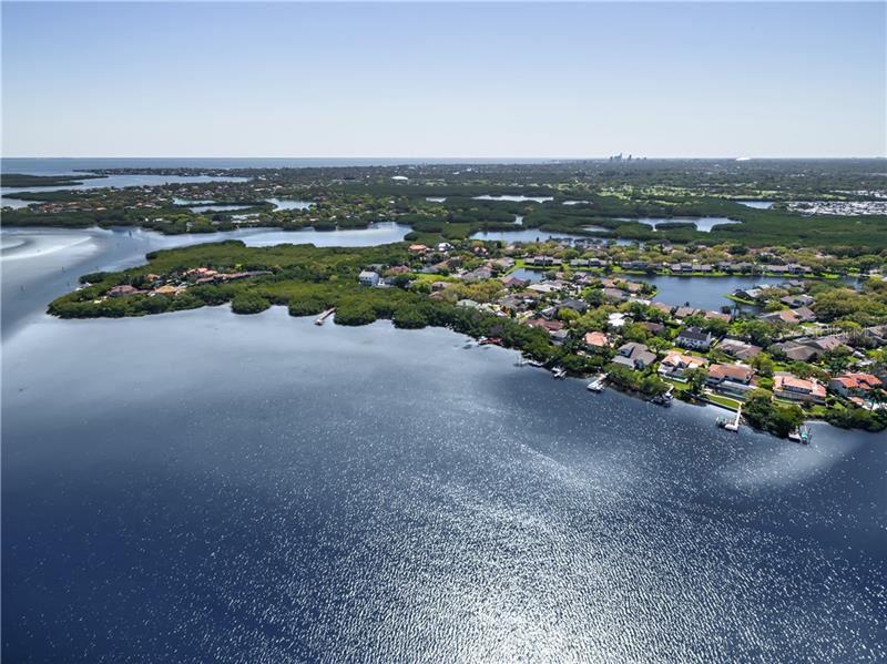 1055 MARCO DRIVE NE, Saint Petersburg, FL 33702 - MLS#: U8071141