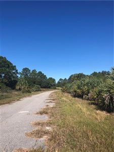 Photo of WINTERVILLE CIRCLE, NORTH PORT, FL 34288 (MLS # A4421148)