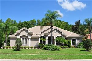 Photo of 5000 QUILL COURT, PALM HARBOR, FL 34685 (MLS # T3187148)