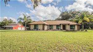 Photo of 4225 WALYN DRIVE, MULBERRY, FL 33860 (MLS # L4912151)