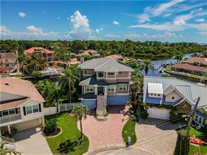 Photo of 340 WESTWINDS CIRCLE, PALM HARBOR, FL 34683 (MLS # U8055159)