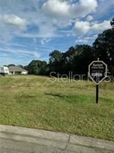 Main image for 10928 BROOKSNEST COURT, LITHIA, FL  33547. Photo 1 of 1