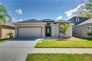 Main image for 12104 RAMBLING STREAM DRIVE, RIVERVIEW,FL33569. Photo 1 of 29