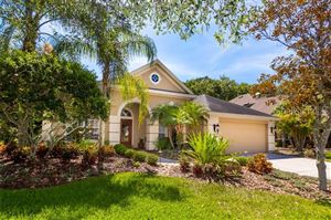 Photo of 2976 NORTHFIELD DRIVE, TARPON SPRINGS, FL 34688 (MLS # U8047172)