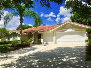 Photo of 17410 HEATHER OAKS PLACE, TAMPA, FL 33647 (MLS # T3175182)