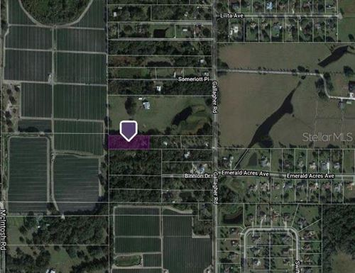 Photo of 13007 STRESS FREE LANE, DOVER, FL 33527 (MLS # T3336182)