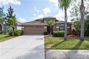 Photo of 3850 OLDE LANARK DRIVE, LAND O LAKES, FL 34638 (MLS # W7816191)