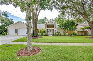 Photo of 5023 BARROWE DRIVE, TAMPA, FL 33624 (MLS # O5743193)