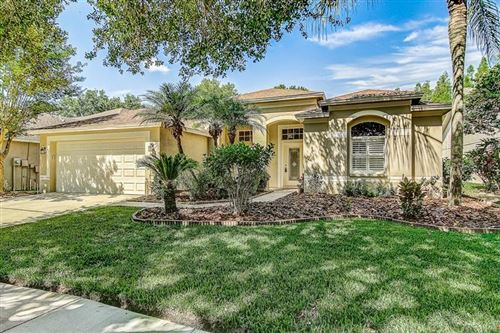 Photo of 10205 TIMBERLAND POINT DRIVE, TAMPA, FL 33647 (MLS # T3248196)