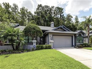 Photo of 885 LUCAS LANE, OLDSMAR, FL 34677 (MLS # U8049198)