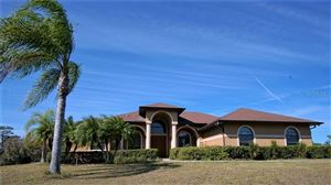Photo of 29325 SADDLEBAG TRAIL, MYAKKA CITY, FL 34251 (MLS # A4426203)