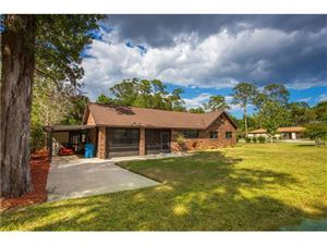 Photo of 260 3RD STREET, OSTEEN, FL 32764 (MLS # S4844205)