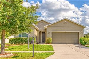Photo of 11111 HARTFORD FERN DRIVE, RIVERVIEW, FL 33569 (MLS # T3176205)