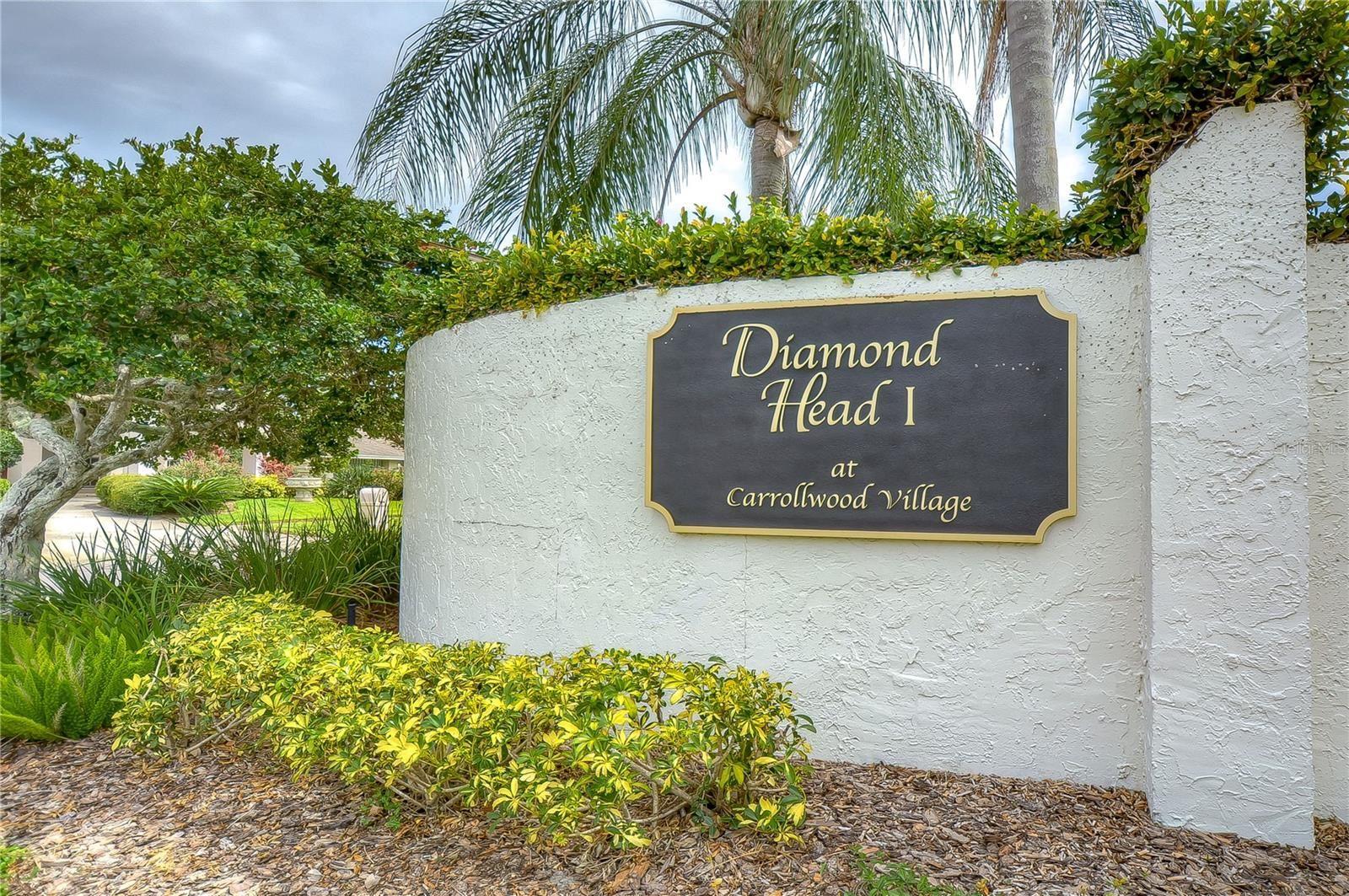 Photo of 13626 DIAMOND HEAD DRIVE, TAMPA, FL 33624 (MLS # T3314206)