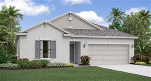 Photo of 21816 CREST MEADOW DRIVE, LAND O LAKES, FL 34637 (MLS # T3176208)
