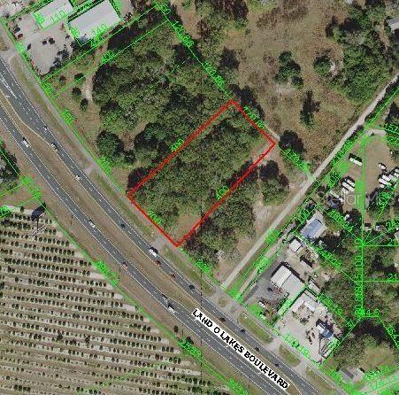 Photo of 6712 LAND O LAKES BOULEVARD, LAND O LAKES, FL 34638 (MLS # U8125208)