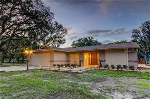Main image for 30403 PALM LANE, WESLEY CHAPEL,FL33545. Photo 1 of 50