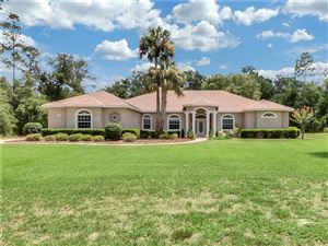 Photo of 1930 GLENWOOD OAKS LANE, DELAND, FL 32720 (MLS # V4908211)