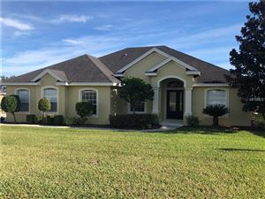 Photo of 2788 VINTAGE VIEW LOOP, LAKELAND, FL 33812 (MLS # L4901213)