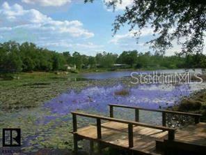 12342 CLEAR LAKE DRIVE, New Port Richey, FL 34654 - #: T3269217