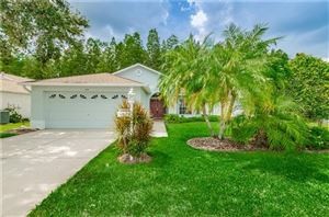 Photo of 1115 SWEET JASMINE DRIVE, TRINITY, FL 34655 (MLS # U8056218)