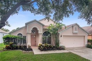 Photo of 10334 LIGHTNER BRIDGE DRIVE, TAMPA, FL 33626 (MLS # T3186222)
