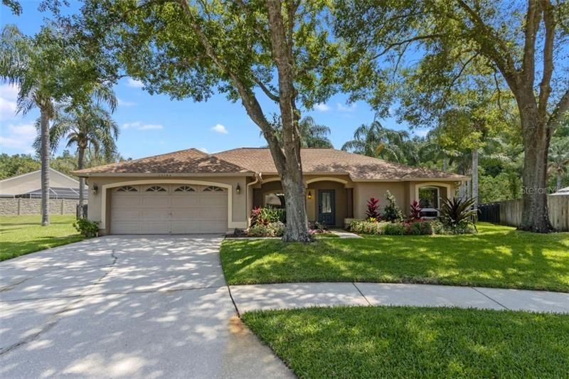 15102 BALD EAGLE STREET, Tampa, FL 33625 - #: T3243225