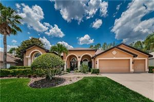 Photo of 4474 ROCKWOOD DRIVE, PALM HARBOR, FL 34685 (MLS # U8046232)