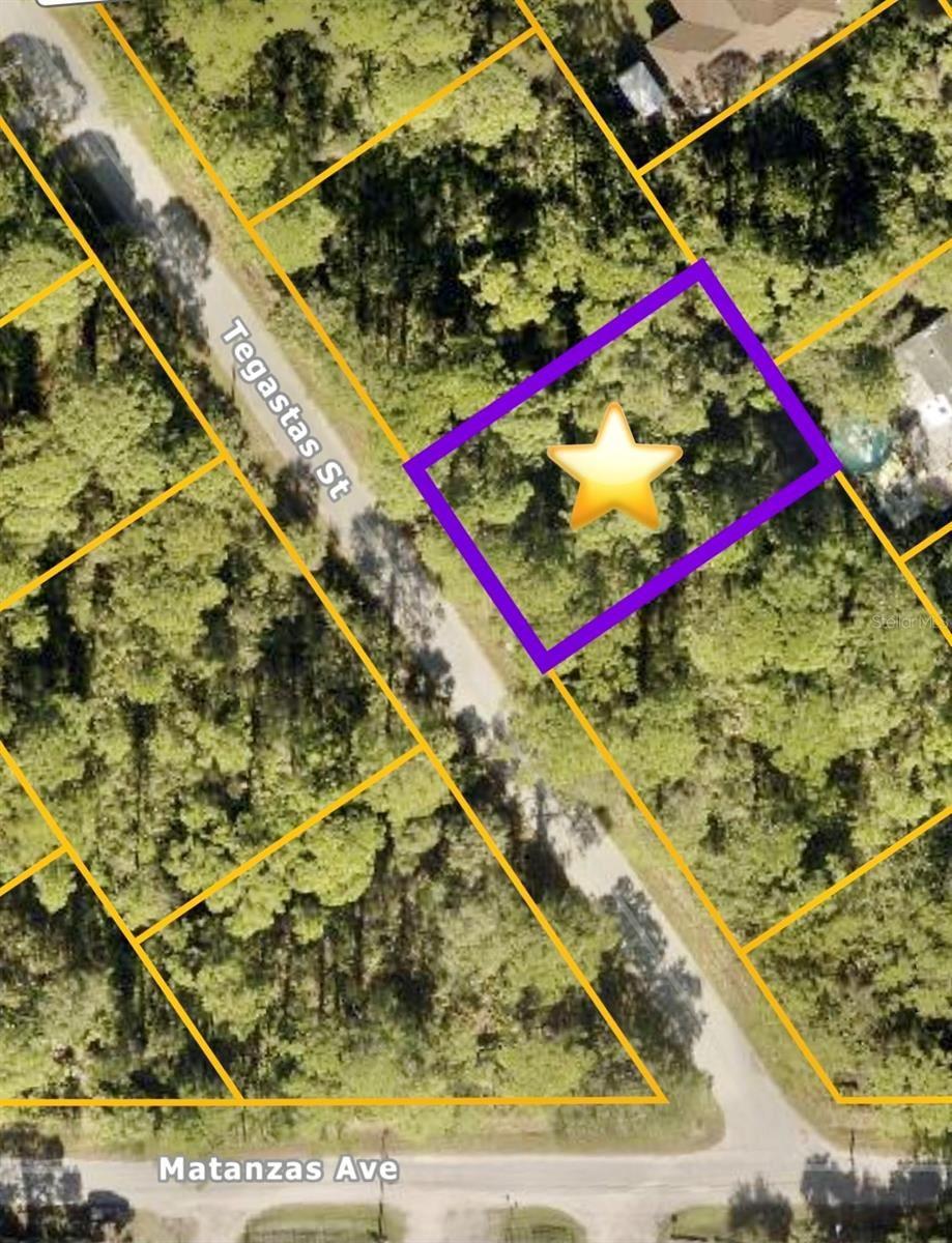 Photo of TEGASTAS STREET, NORTH PORT, FL 34287 (MLS # C7449238)