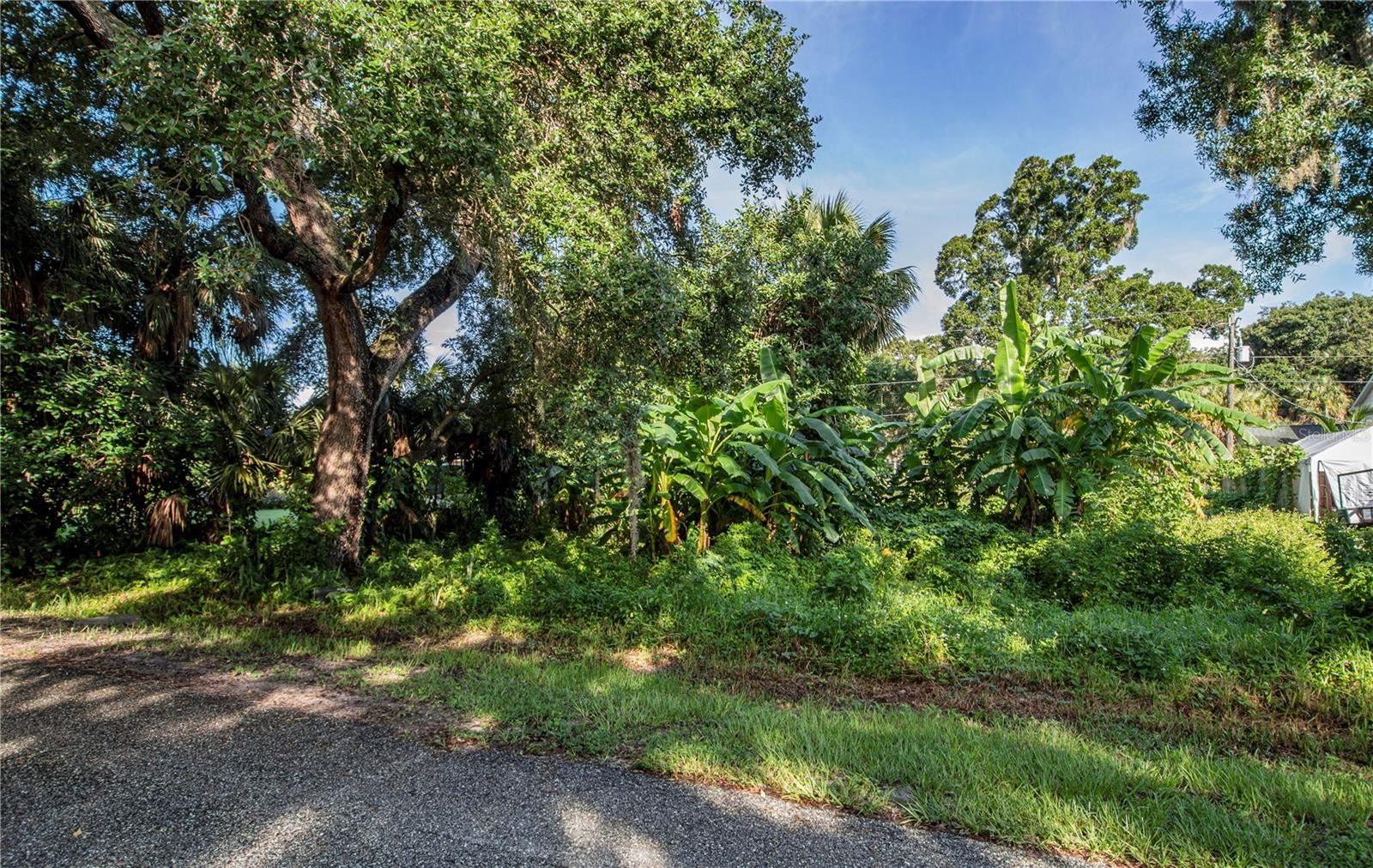 Photo of AVALON ROAD, VENICE, FL 34293 (MLS # D6121239)