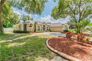 Photo of 3038 RIVER WOODS DRIVE, PARRISH, FL 34219 (MLS # A4446244)