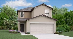 Main image for 7418 FRENCH MARIGOLD AVENUE, TAMPA, FL  33619. Photo 1 of 8