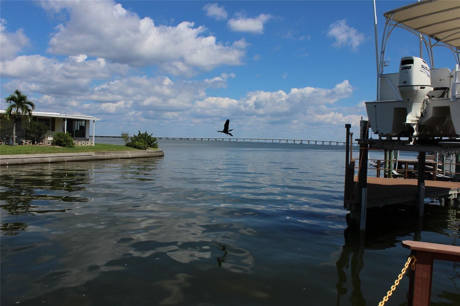 18675 US HIGHWAY 19 N #383, Clearwater, FL 33764 - #: U8140250