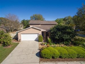 Photo of 15801 COUNTRY LAKE DRIVE, TAMPA, FL 33624 (MLS # T3161253)
