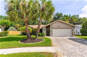 Main image for 11916 STEPPINGSTONE BOULEVARD, TAMPA,FL33635. Photo 1 of 29