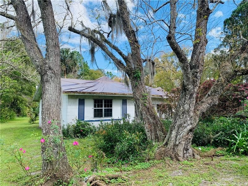 729 E PALMETTO ROAD, Pierson, FL 32180 - #: V4917254