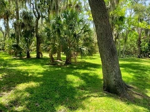 Main image for 0 ISTHMUS DRIVE, NEW PORT RICHEY,PORT RICHEY, FL  34652. Photo 1 of 4