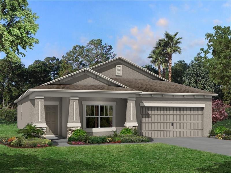 30451 CARAVELLE COURT, Wesley Chapel, FL 33545 - #: T3265271