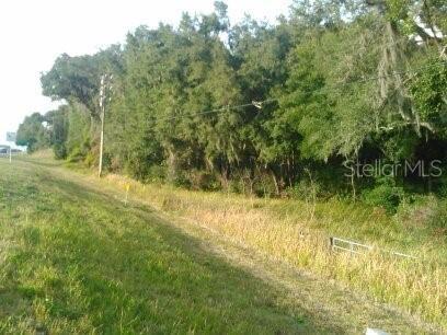 Photo of US HWY 441/27, SUMMERFIELD, FL 34491 (MLS # G5036278)