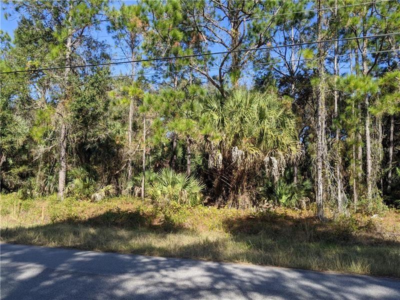 Photo of AGEMAN AVENUE, NORTH PORT, FL 34288 (MLS # C7423283)