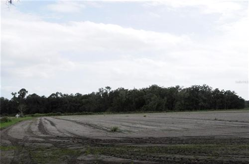 Photo of DOWNING ROAD, DOVER, FL 33527 (MLS # O5943295)